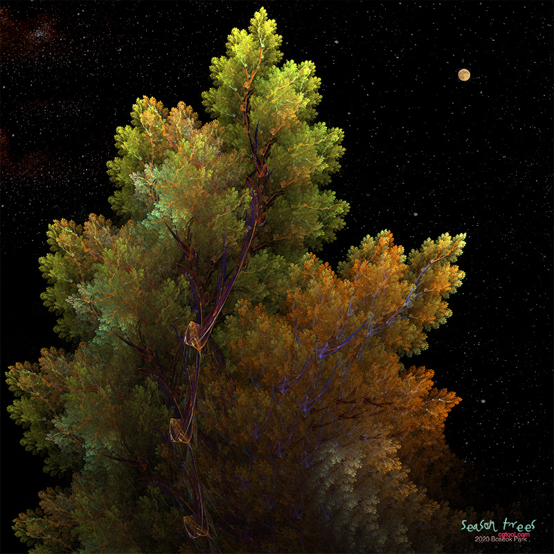 seasonTrees7.jpg