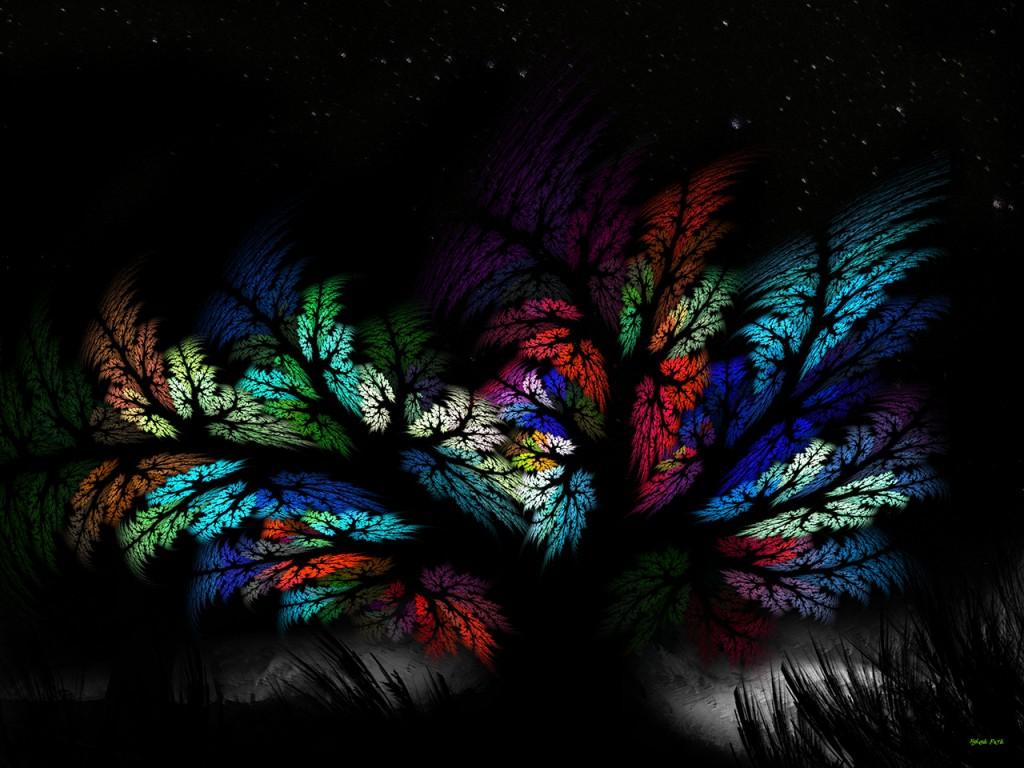 오색나무.jpg