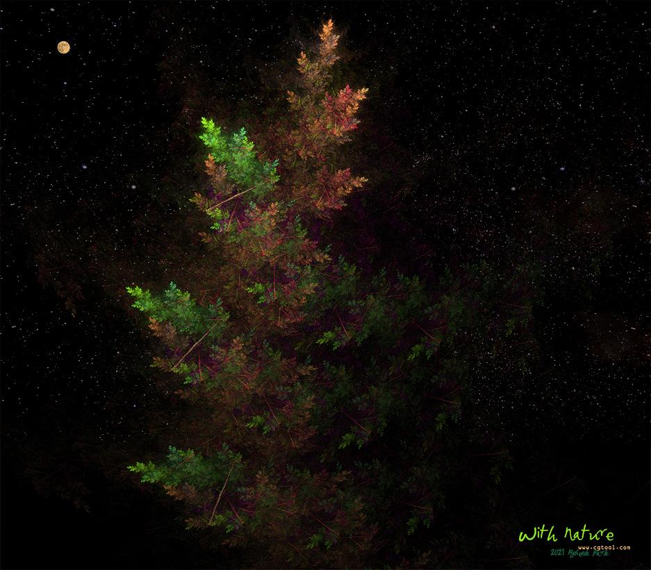 늘푸른나무2.jpg