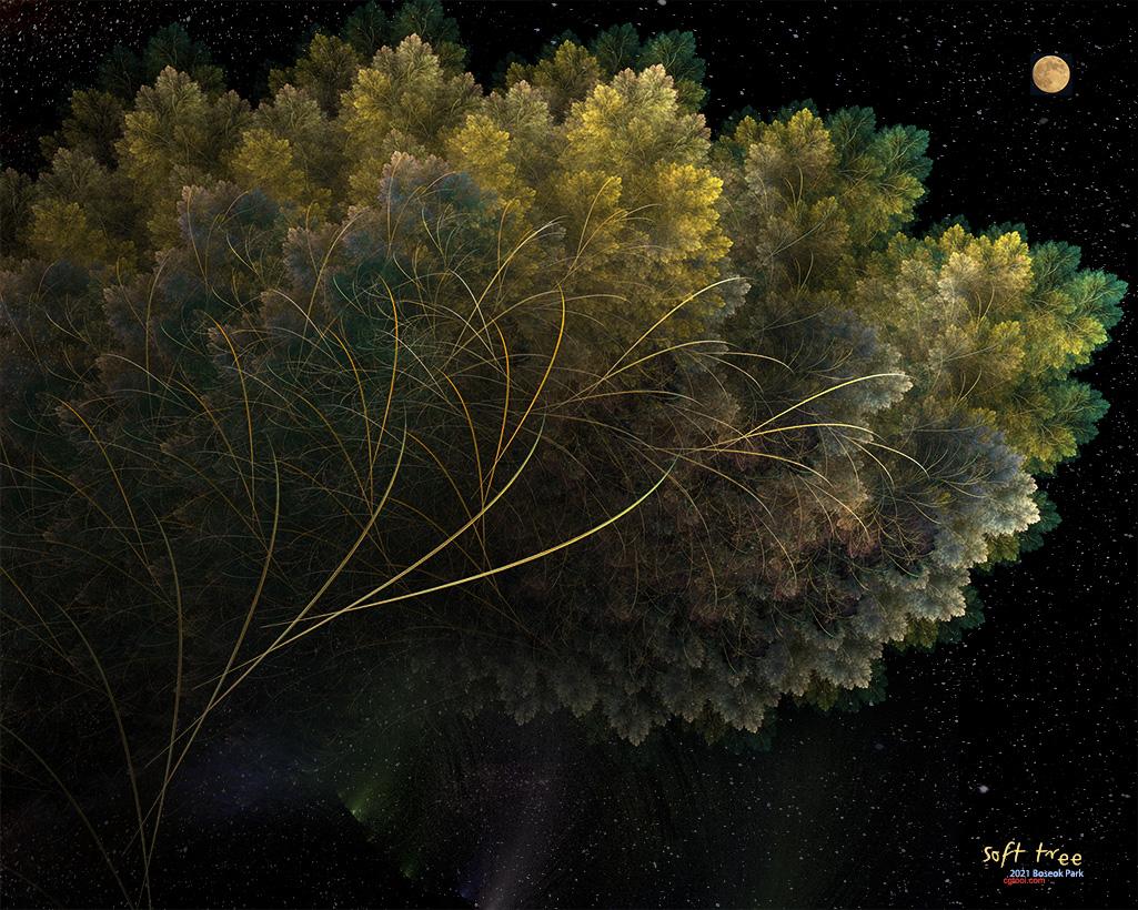 컬러나무2-11.jpg