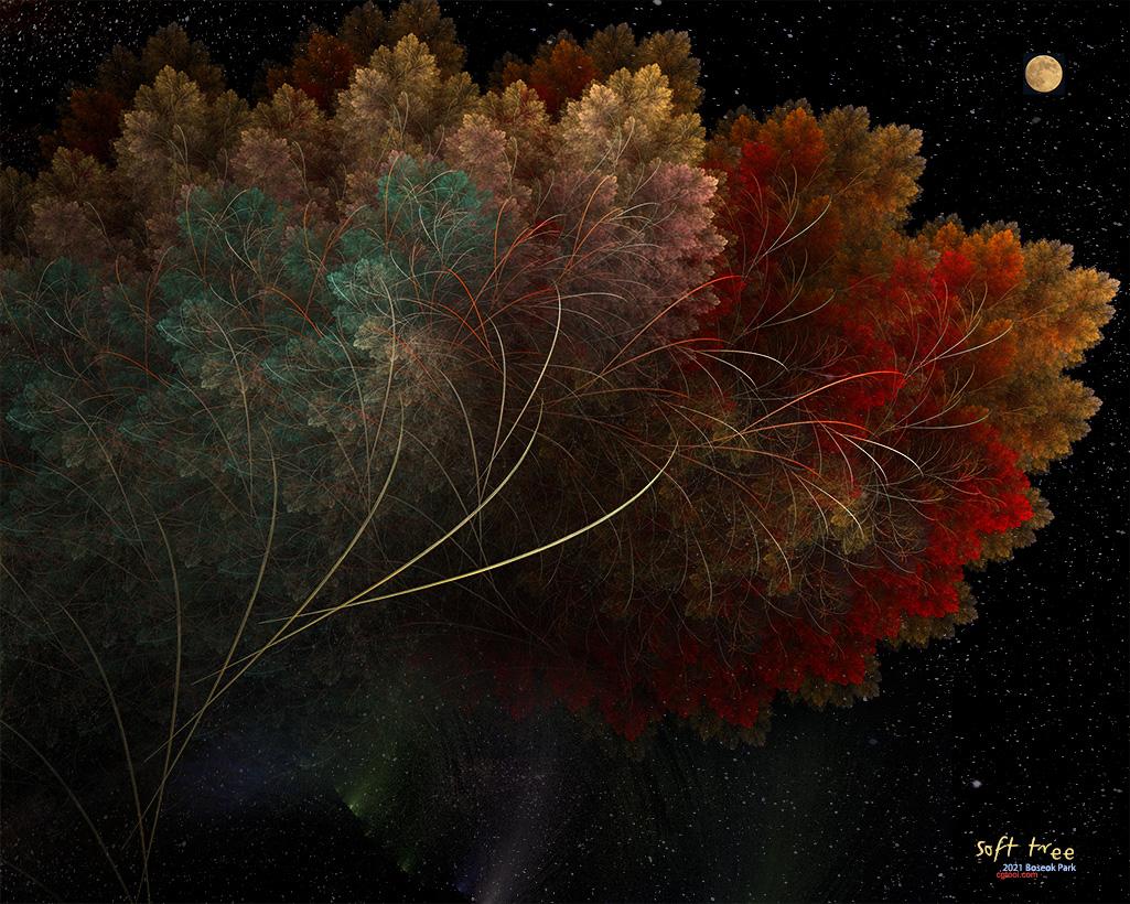 컬러나무2-15.jpg