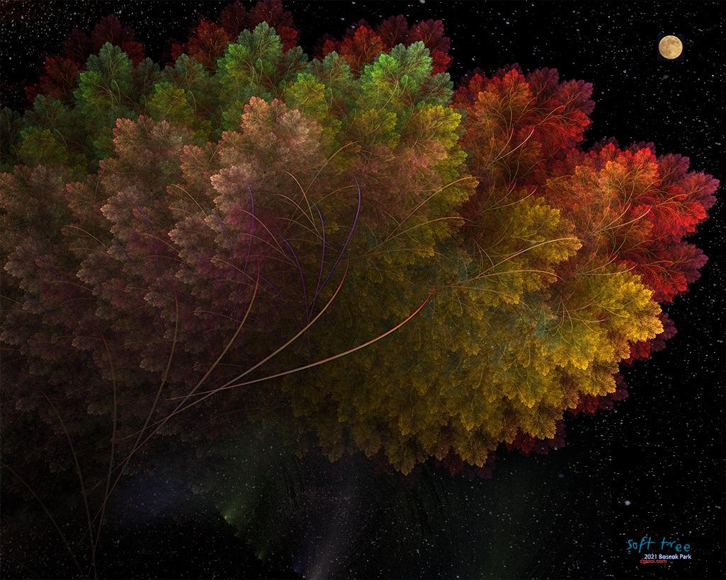 컬러나무2-4.jpg