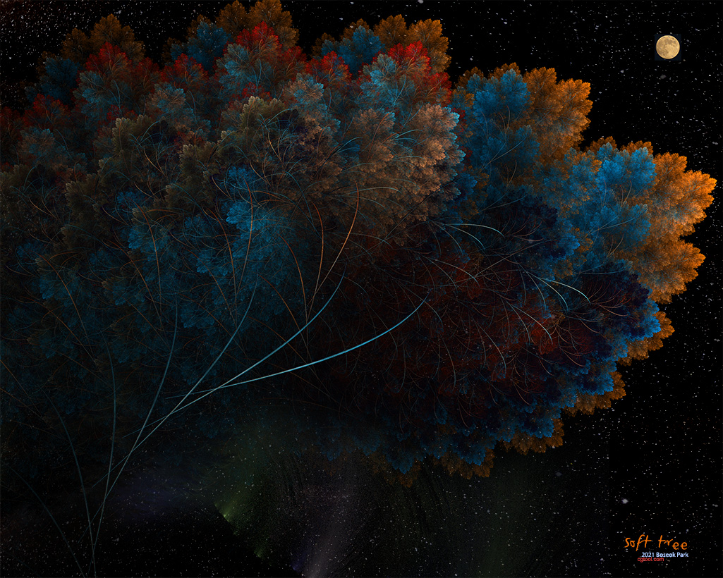 컬러나무2-6.jpg