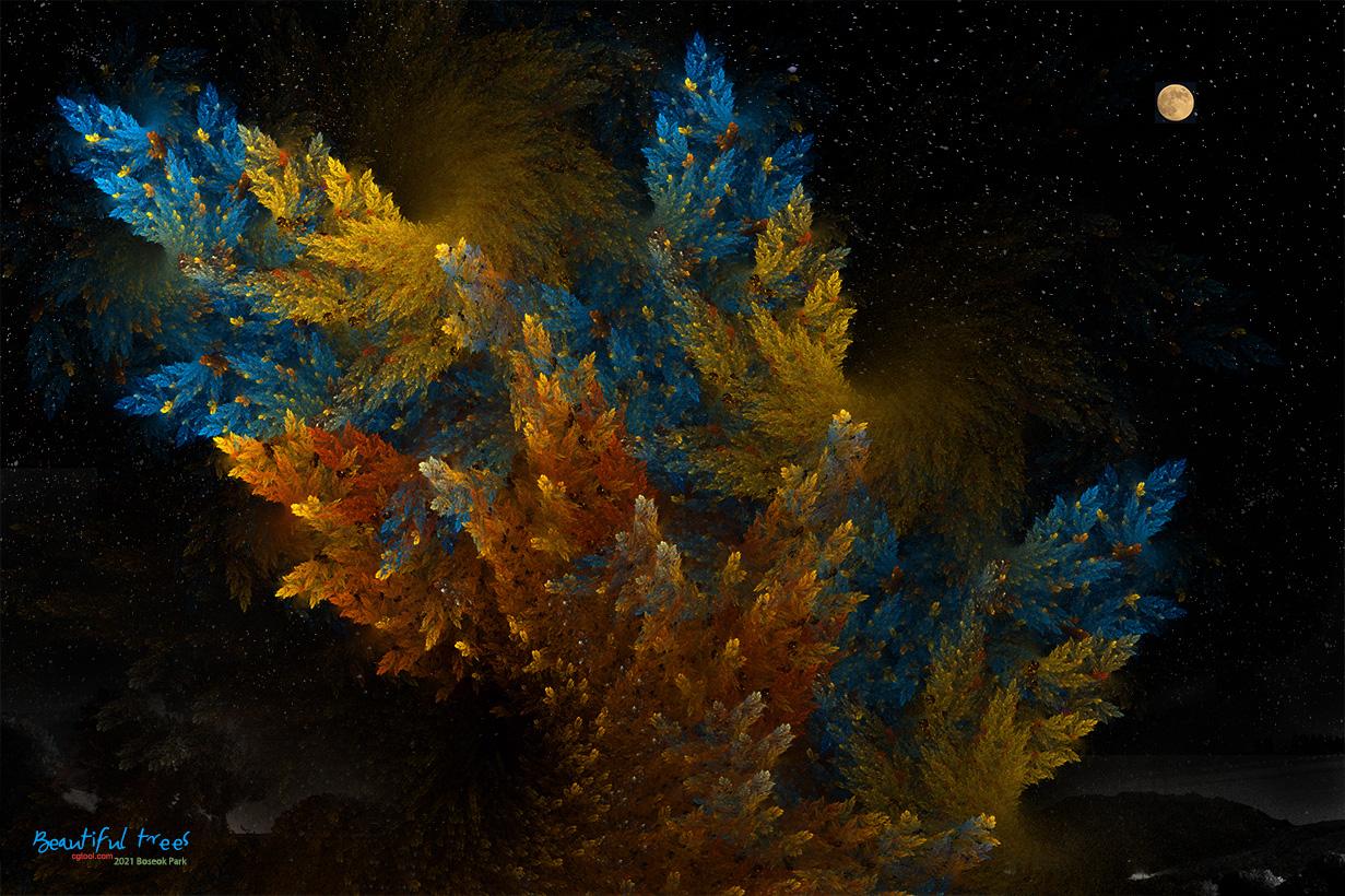 낙엽송-1.jpg