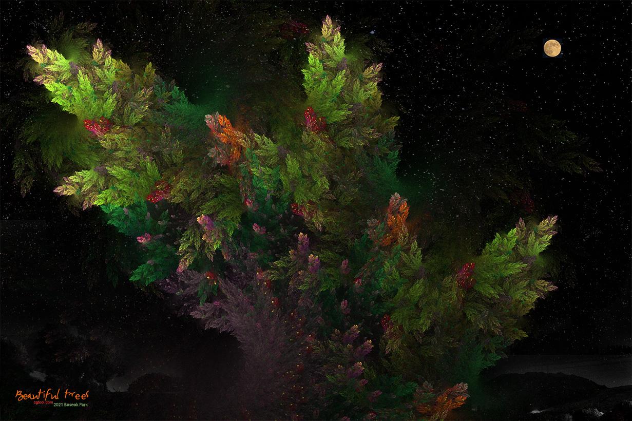 낙엽송-4.jpg