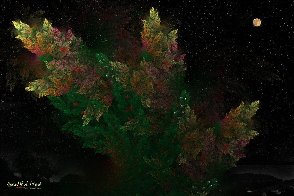 낙엽송-4-1.jpg