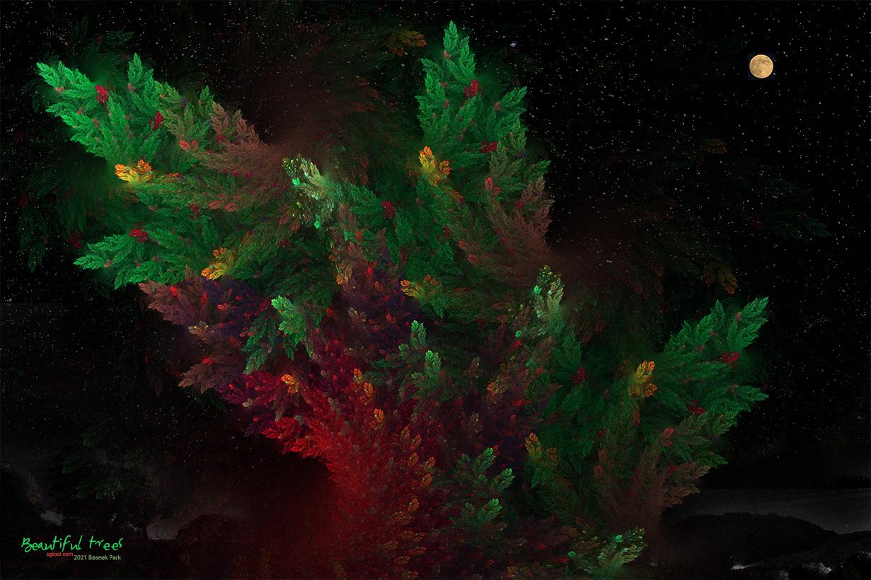 낙엽송-5-1.jpg