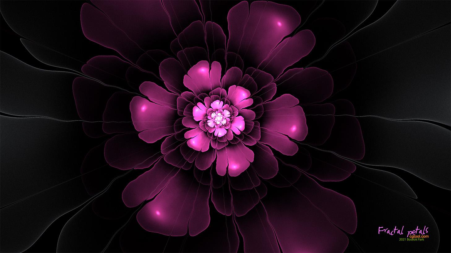 분홍꽃1.jpg