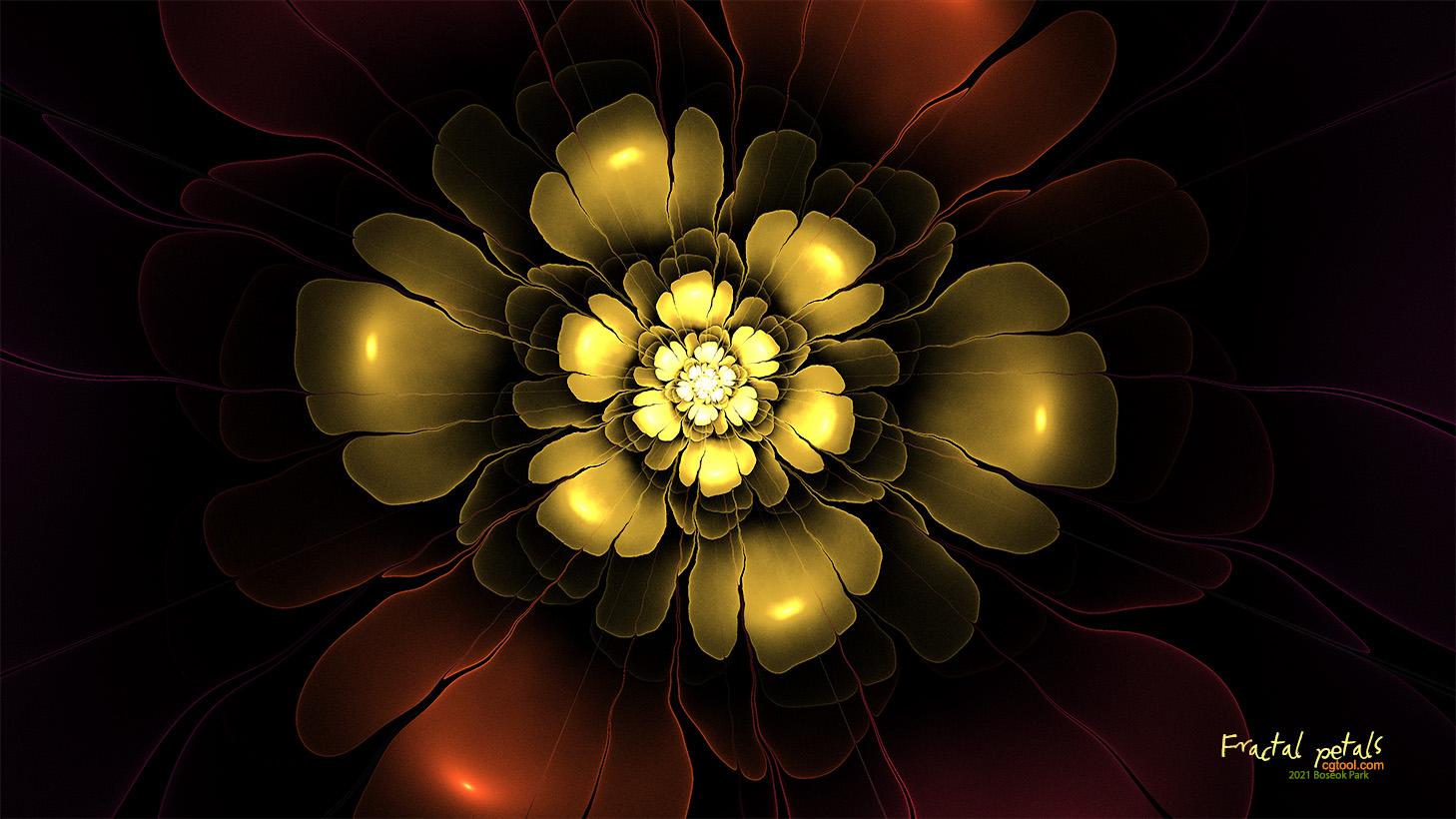 분홍꽃4.jpg