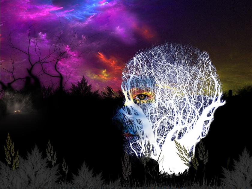자연의시선(숲).jpg