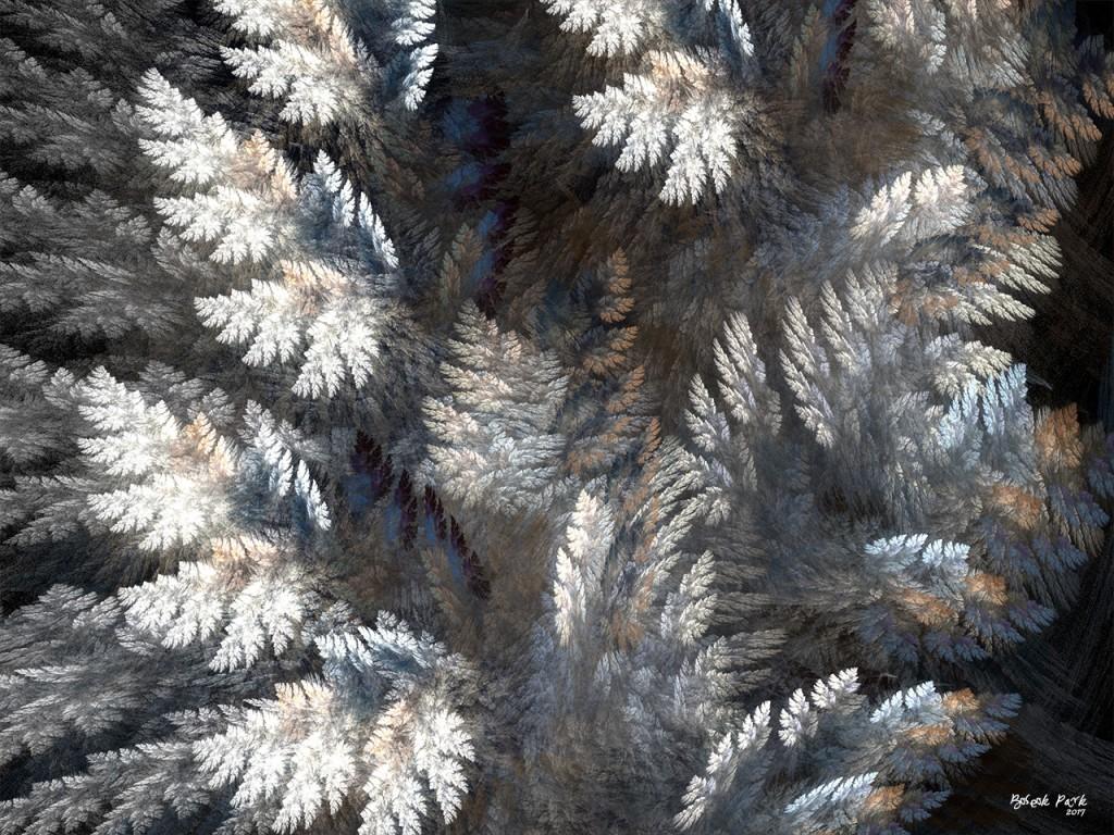 눈덮인나무1.jpg