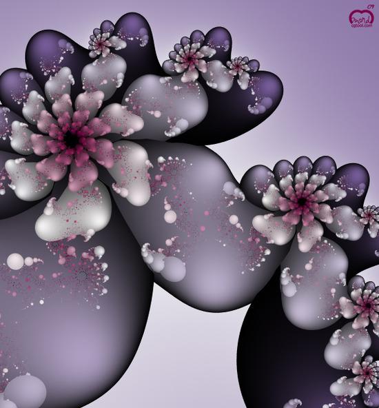 flower1_mobilos.jpg