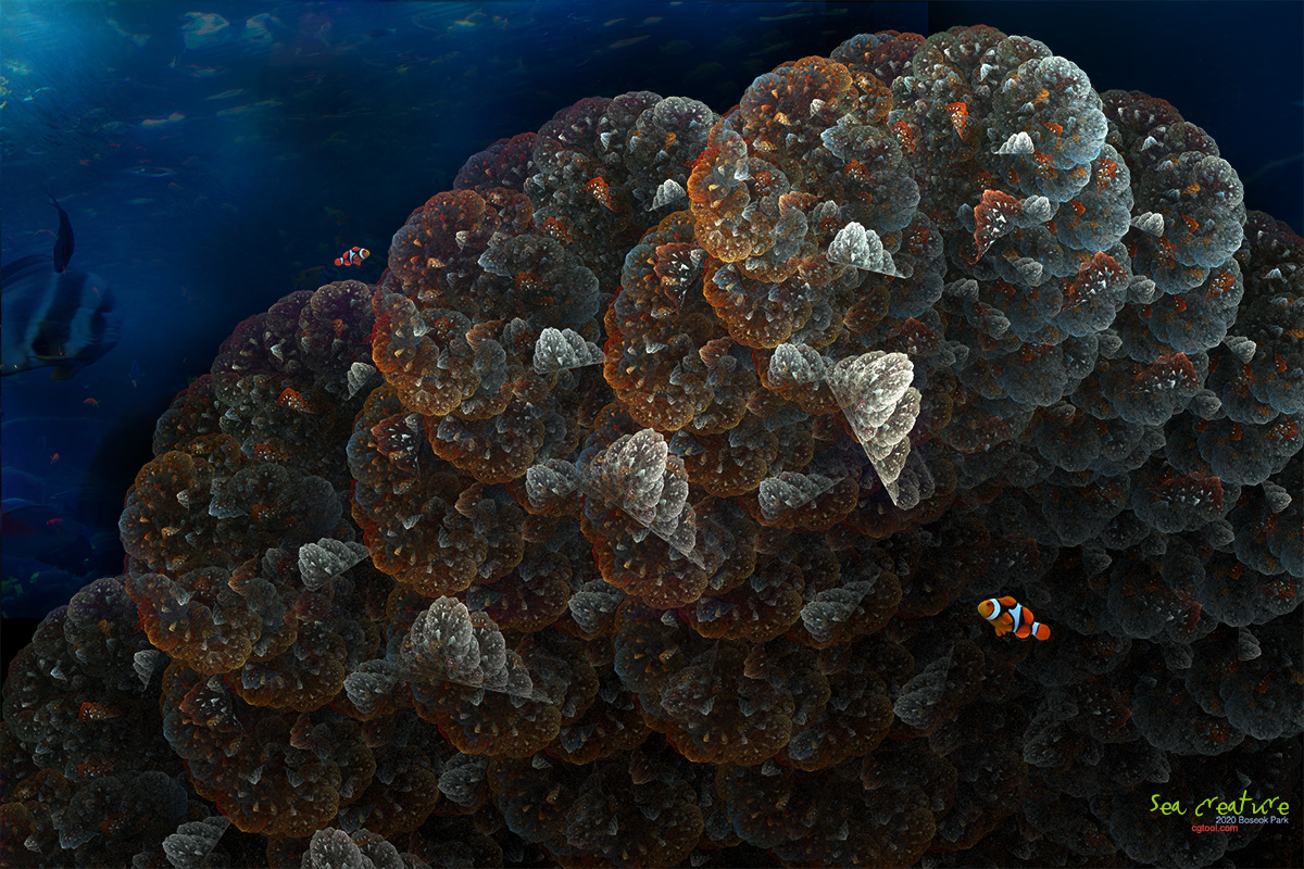 해저동물4-1.jpg