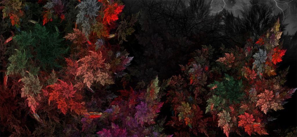 단풍나무2.jpg