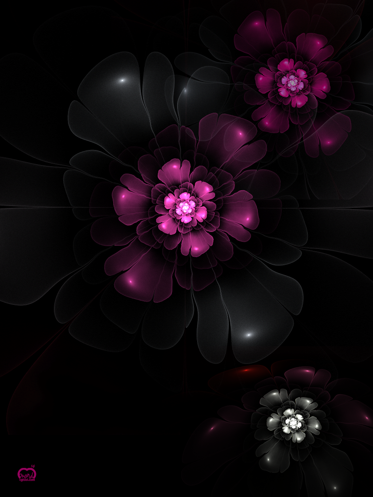 iPad-flower.png