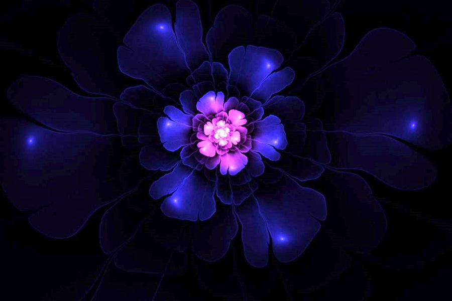 bloom_99-22.jpg