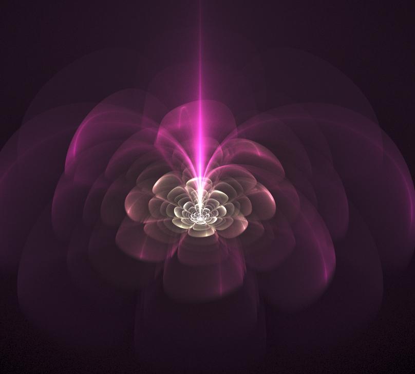 200902087 한주홍 꽃 2.jpg