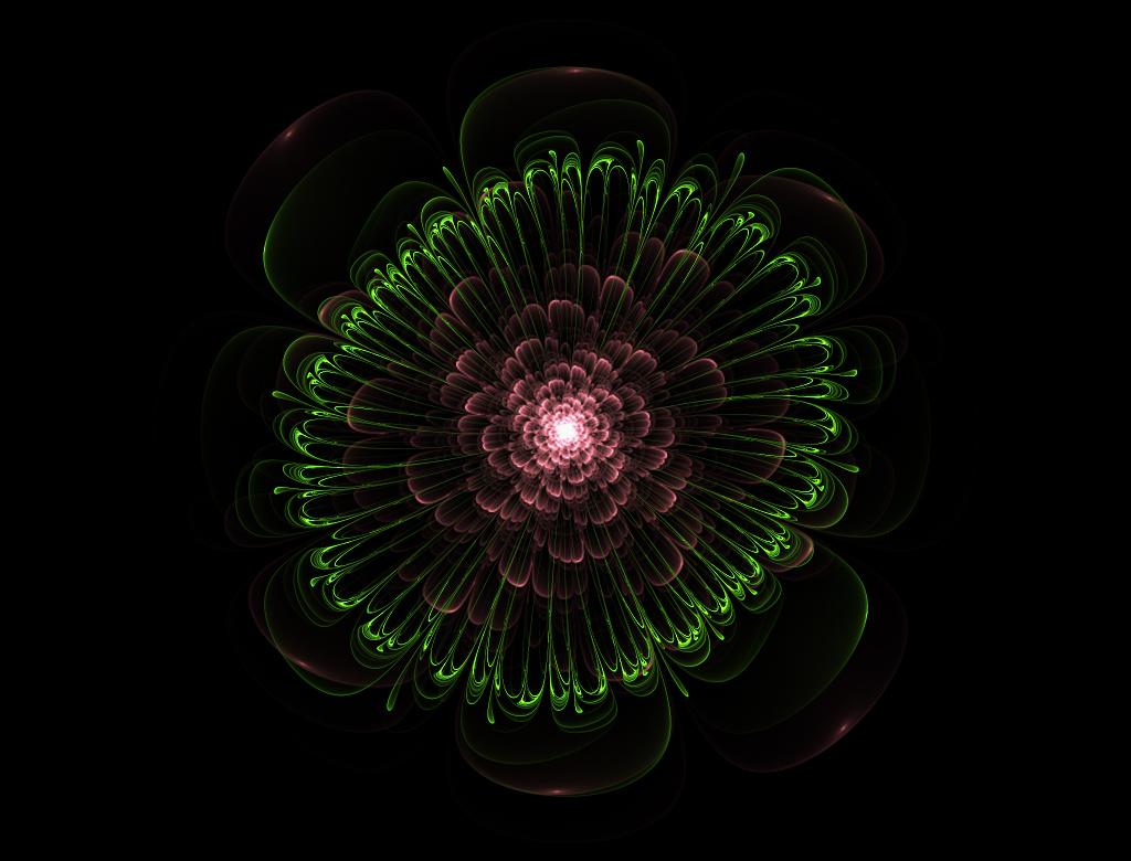 201301005 꽃.jpg