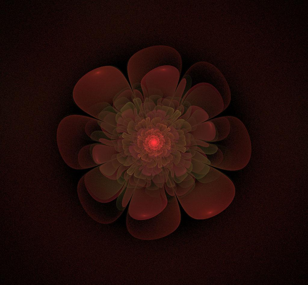 관금flower.jpg
