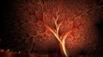 5.나무혈관.jpg